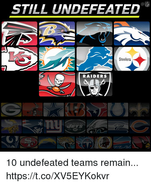 Memes, Raiders, and Steelers: STILL UNDEFEATED  Steelers  RAIDERS  nu 10 undefeated teams remain... https://t.co/XV5EYKokvr