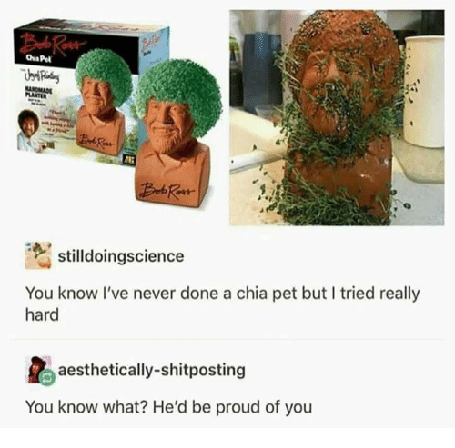 Dank, Proud, and Never: stilldoingscience  You know I've never done a chia pet but I tried really  aesthetically-shitposting  You know what? He'd be proud of you