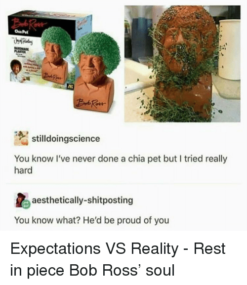 Bob Ross, Proud, and Never: stilldoingscience  You know I've never done a chia pet but I tried really  hard  aesthetically-shitposting  You know what? He'd be proud of you Expectations VS Reality - Rest in piece Bob Ross' soul