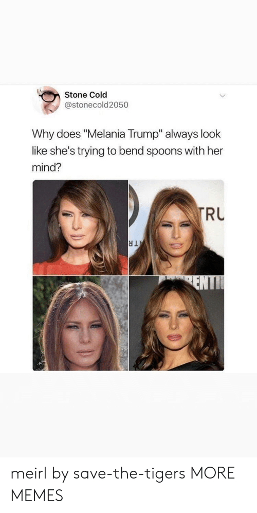 "Dank, Melania Trump, and Memes: Stone Cold  @stonecold2050  Why does ""Melania Trump"" always look  like she's trying to bend spoons with her  mind?  RU meirl by save-the-tigers MORE MEMES"