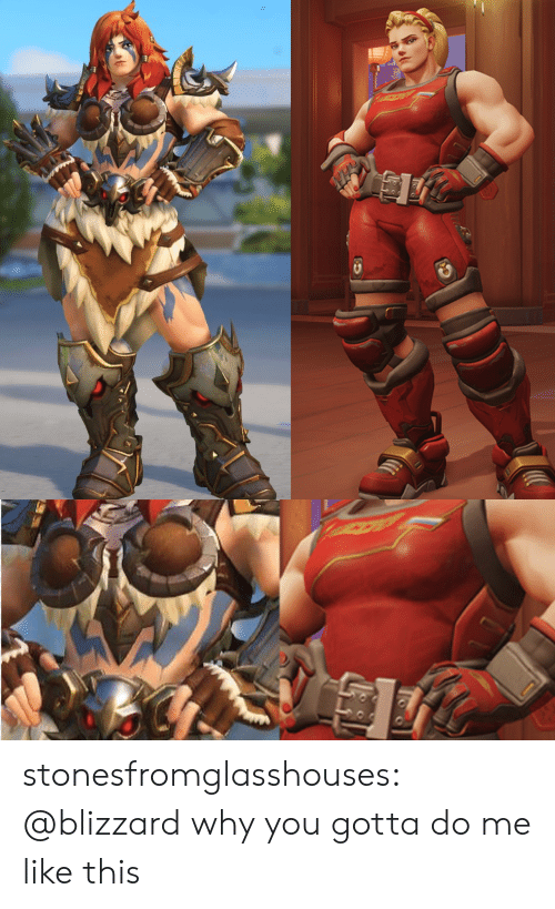 Why You Gotta: stonesfromglasshouses:  @blizzard why you gotta do me like this