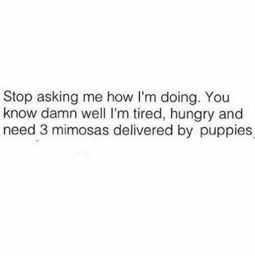 Dank, Hungry, and Puppies: Stop asking me how I'm doing. You  know damn well I'm tired, hungry and  need 3 mimosas delivered by puppies
