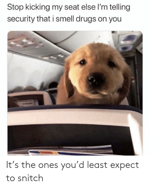 security: Stop kicking my seat else l'm telling  security that i smell drugs on you It's the ones you'd least expect to snitch