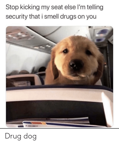 Drug: Stop kicking my seat else l'm telling  security that i smell drugs on you  W451-68/1T Drug dog