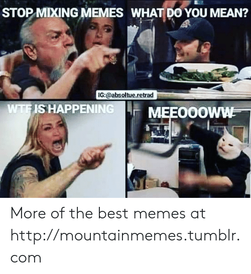 best memes: STOP MIXING MEMES WHAT DO YOU MEAN?  IG:@absoltue.retrad  WTFIS HAPPENING  MEEO0OWW More of the best memes at http://mountainmemes.tumblr.com