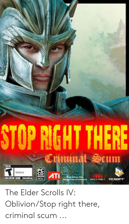Skyrim Guard Stop Right There