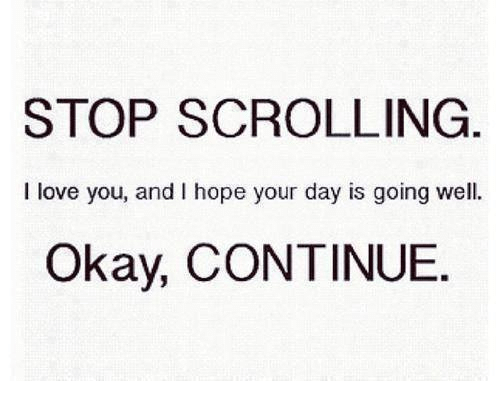 Love, I Love You, and Okay: STOP SCROLLING  I love you, and I hope your day is going well.  Okay, CONTINUE