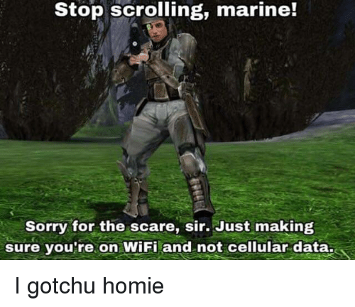 Homie, Scare, and Sorry: Stop scrolling, marine!  Sorry for the scare, sir. Just making  sure vou're on WiFi and not cellular data. I gotchu homie