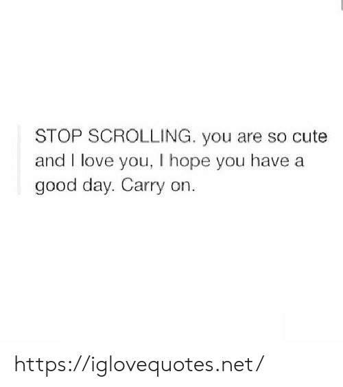 Cute, Love, and I Love You: STOP SCROLLING. you are so cute  and I love you, I hope you have a  good day. Carry on. https://iglovequotes.net/