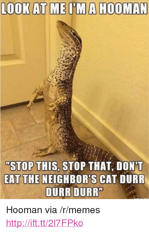 "durr: ""STOP THIS, STOP THAT, DON'T  EAT THE NEIGHBOR'S CAT DURR  DURR DURR <p>Hooman via /r/memes <a href=""http://ift.tt/2l7FPko"">http://ift.tt/2l7FPko</a></p>"