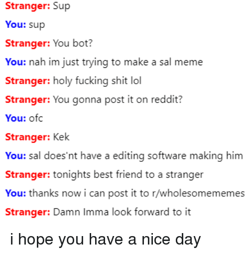 Best Friend, Fucking, and Lol: Stranger: Sup  You: sup  Stranger: You bot?  You: nah im just trying to make a sal meme  Stranger: holy fucking shit lol  Stranger: You gonna post it on reddit?  You: ofc  Stranger: Kek  You: sal does'nt have a editing softw  Stranger: tonights best friend to a stranger  You: thanks now i can post it to r/wholesomememes  are making him  Stranger: Damn Imma look fornward to it i hope you have a nice day