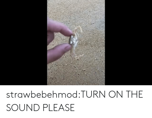Target, Tumblr, and Blog: strawbebehmod:TURN ON THE SOUND PLEASE