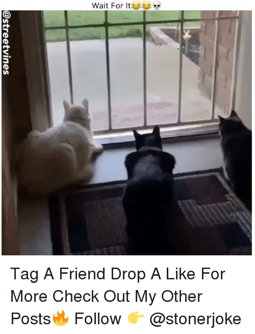 Check Out The More Like This: Tag A Friend Drop A Like For More Check Out My Other Posts