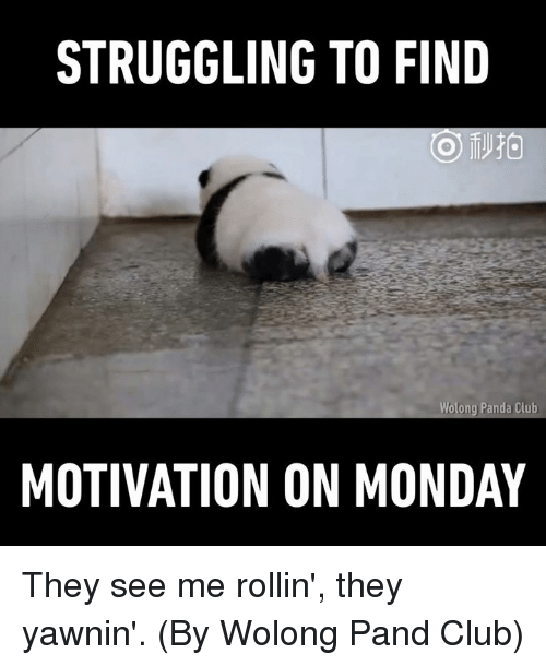Club, Dank, and Mondays: STRUGGLING TO FIND  Wolong Panda Club  MOTIVATION ON MONDAY They see me rollin', they yawnin'. (By Wolong Pand Club)