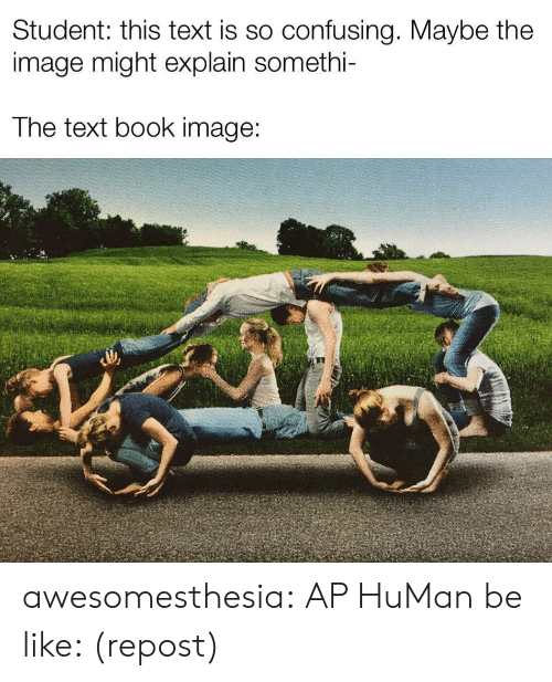 Confusing: Student: this text is so confusing. Maybe the  image might explain somethi-  The text book image: awesomesthesia:  AP HuMan be like: (repost)