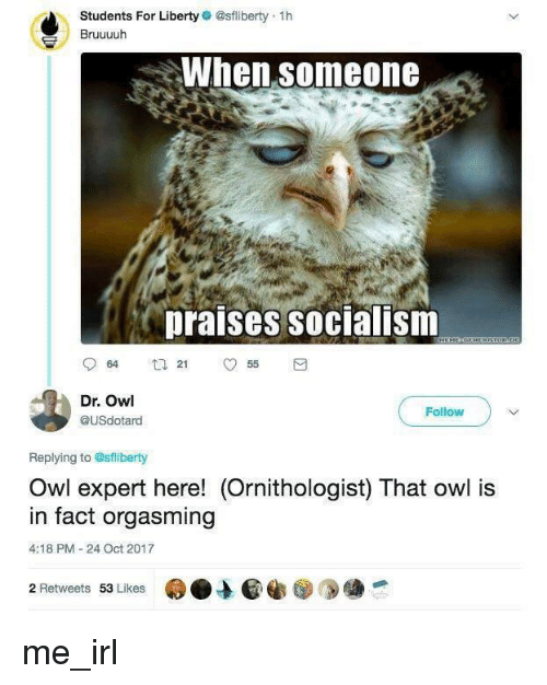 Socialism, Liberty, and Irl: Students For Liberty @sfliberty 1h  Bruuuuh  When someone  praises socialism  Dr. Owl  @USdotard  Follow  Replying to @sflberty  Owl expert here! (Ornithologist) That owl is  in fact orgasming  4:18 PM -24 Oct 2017  2 Retweets 53 Lkes me_irl