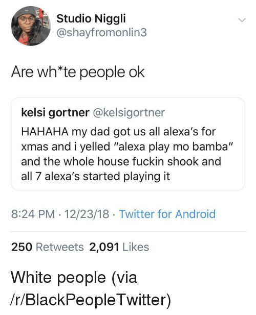 """Android, Blackpeopletwitter, and Dad: Studio Niggli  @shayfromonlin3  Are wh*te people ok  kelsi gortner @kelsigortner  HAHAHA my dad got us all alexa's for  xmas and i yelled """"alexa play mo bamba""""  and the whole house fuckin shook and  all 7 alexa's started playing it  8:24 PM 12/23/18 Twitter for Android  250 Retweets 2,091 Likes White people (via /r/BlackPeopleTwitter)"""