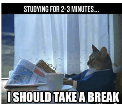 Take A Break: STUDYING FOR 2-3 MINUTES  ISHOULD TAKE A BREAK