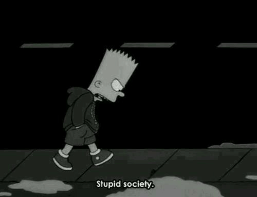Society and Stupid: Stupid society