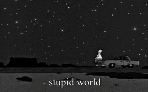 World and Stupid: stupid world