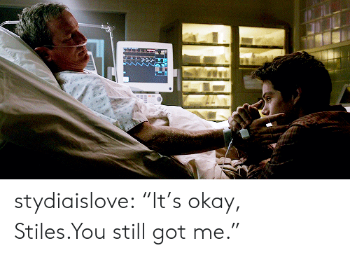 "Target, Tumblr, and Blog: stydiaislove: ""It's okay, Stiles.You still got me."""