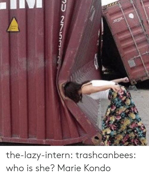 Lazy, Target, and Tumblr: SU 27531 the-lazy-intern:  trashcanbees:  who is she?  Marie Kondo