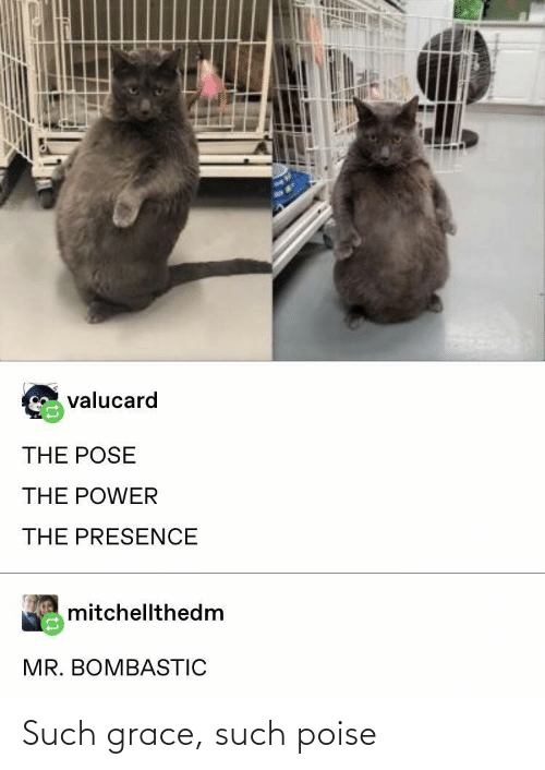 Poise: Such grace, such poise