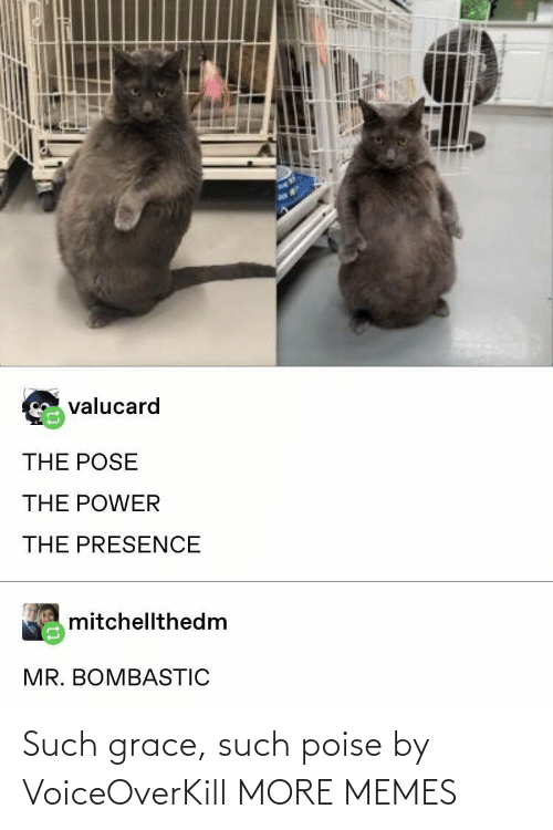 Poise: Such grace, such poise by VoiceOverKill MORE MEMES