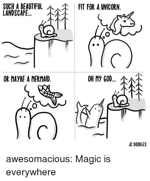 Beautiful, God, and Oh My God: SUCHA BEAUTIFUL  LANDSCAPE  FIT FOR A UNICORN  OR MAYBE A MERMAID  OH My GOD  소서.  JC DOODLES awesomacious:  Magic is everywhere