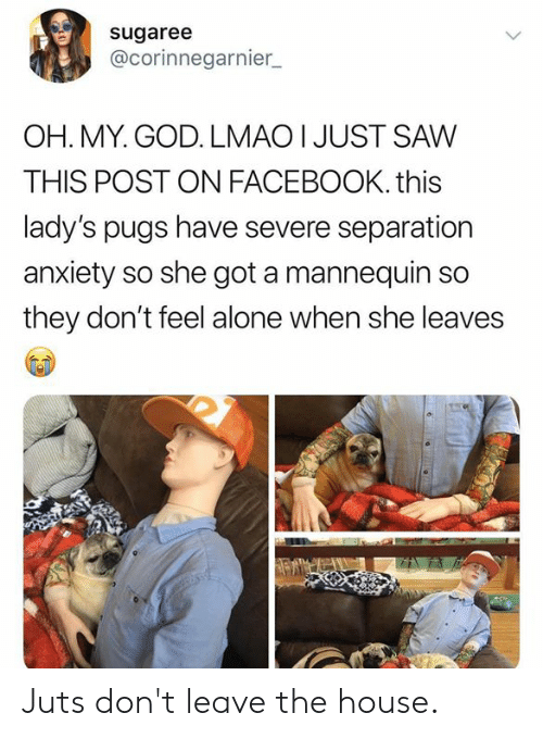 Being Alone, Dank, and Facebook: sugaree  @corinnegarnier  OH. MY. GOD. LMAO I JUST SAW  THIS POST ON FACEBOOK. this  lady's pugs have severe separation  anxiety so she got a mannequin so  they don't feel alone when she leaves Juts don't leave the house.