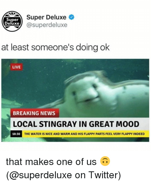 Memes, Mood, and News: Super  Deluxe l G  Super Deluxe  xe @superdeluxe  at least someone's doing ok  LIVE  BREAKING NEWS  LOCAL STINGRAY IN GREAT MOOD  18:30  THE WATER IS NICE AND WARM AND HIS FLAPPY PARTS FEEL VERY FLAPPY INDEED that makes one of us 🙃 (@superdeluxe on Twitter)