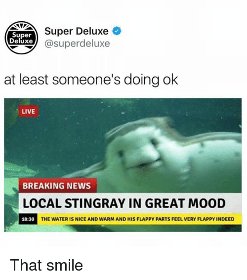 Greates: Super Deluxe  Super  eluxe@superdeluxe  at least someone's doing ok  LIVE  BREAKING NEWS  LOCAL STINGRAY IN GREAT MOOD  18:30  THE WATER IS NICE AND WARM AND HIS FLAPPY PARTS FEEL VERY FLAPPY INDEED That smile
