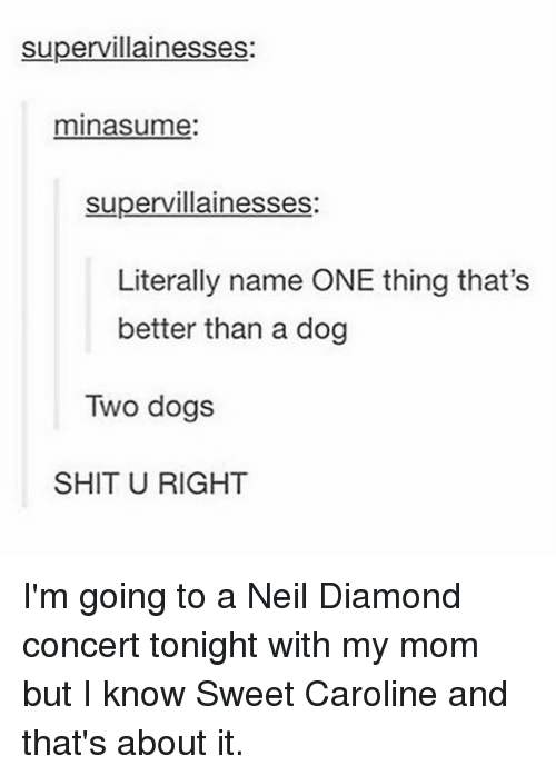 Literally Name One Thing That S Better Than A Dog
