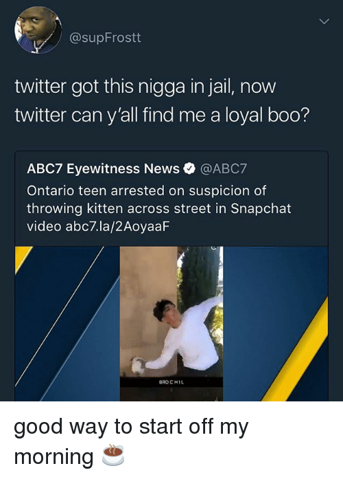 Boo, Jail, and Memes: @supFrostt  twitter got this nigga in jail, now  twitter can y'all find me a loyal boo?  ABC7 Eyewitness News @ABC7  Ontario teen arrested on suspicion of  throwing kitten across street in Snapchat  video abc7.la/2AoyaaF  BRO CHIL good way to start off my morning ☕️