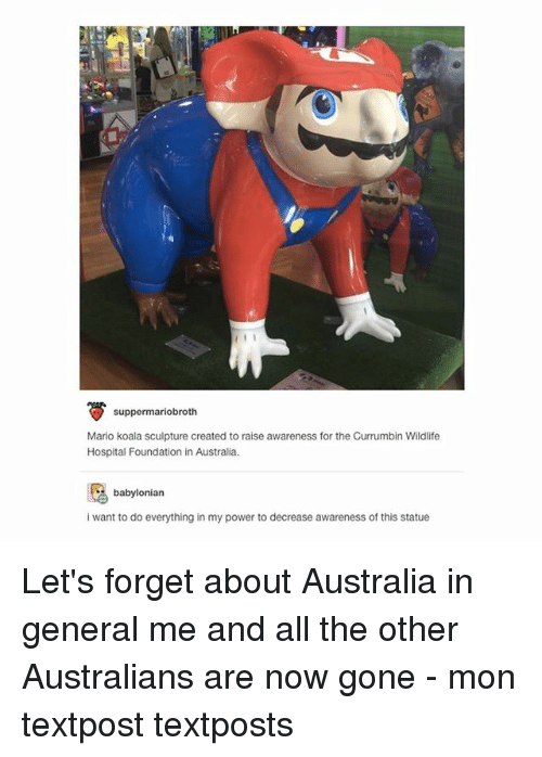 Memes, Mario, and Australia: suppermariobroth  Mario koala sculpture created to raise awareness for the Currumbin Wildlife  Hospital Foundation in Australia.  babylonian  i want to do everything in my power to decrease awareness of this statue Let's forget about Australia in general me and all the other Australians are now gone - mon textpost textposts