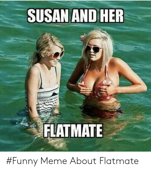 Funny, Meme, and Her: SUSAN AND HER  FLATMATLE #Funny Meme About Flatmate
