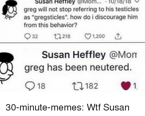 """discourage: Susan Heftley Mom... 10i8ri8  greg will not stop referring to his testicles  as """"gregsticles"""". how do i discourage him  from this behavior?  932  218 v1.200  Susan Heffley @Mom  greg has been neutered.  918  182  1 30-minute-memes:  Wtf Susan"""
