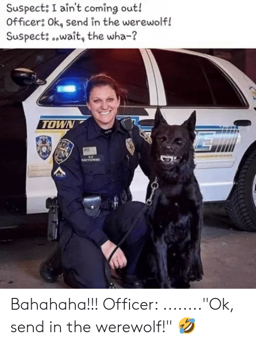 """Memes, 🤖, and Werewolf: Suspect: I ain't coming out!  Officers Ok, send in the werewolf!  Suspect: .wait, the wha-?  TOWN Bahahaha!!! Officer: ........""""Ok, send in the werewolf!"""" 🤣"""