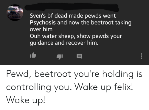 Water, Him, and Sheep: Sven's bf dead made pewds went  Psychosis and now the beetroot taking  over him  Ouh water sheep, show pewds your  guidance and recover him. Pewd, beetroot you're holding is controlling you. Wake up felix! Wake up!