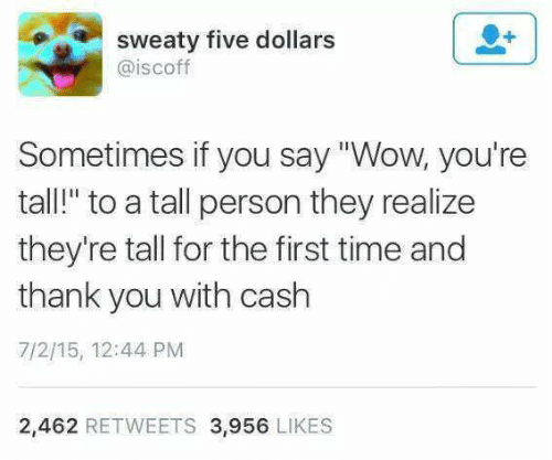 """the first time: sweaty five dollars  @iscoff  Sometimes if you say """"Wow, you're  tall!"""" to a tall person they realize  they're tall for the first time and  thank you with cash  7/2/15, 12:44 PM  2,462 RETWEETS 3,956 LIKES"""