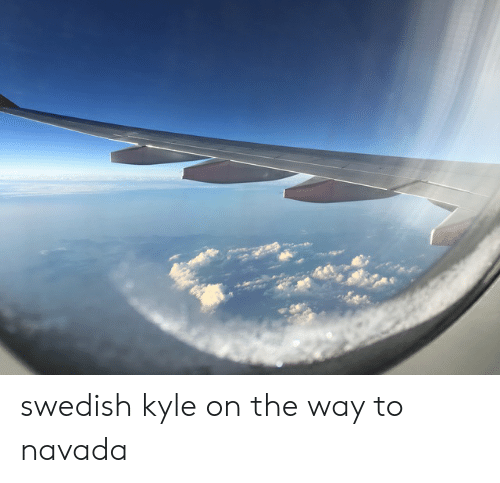 Dank Memes, Swedish, and Kyle: swedish kyle on the way to navada