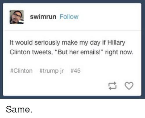 "Memes, Trump, and 🤖: swimrun Follow  It would seriously make my day if Hillary  Glinton tweets, ""But her emails!"" right now.  #Clinton #trump jr Same."
