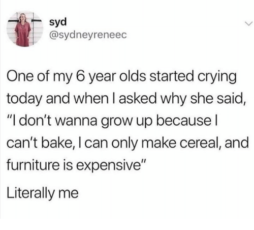 """Crying, Furniture, and Today: syd  @sydneyreneec  One of my 6 year olds started crying  today and when l asked why she said,  """"I don't wanna grow up because l  can't bake, I can only make cereal, and  furniture is expensive""""  Literally me"""