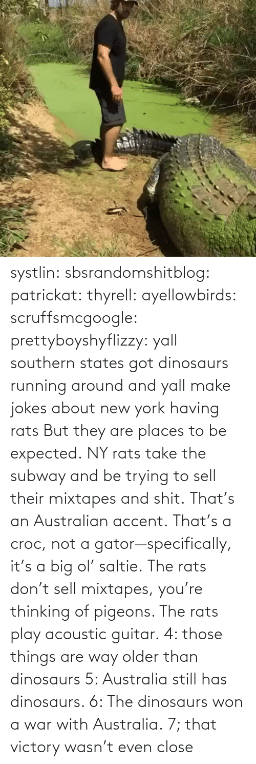close: systlin: sbsrandomshitblog:  patrickat:   thyrell:  ayellowbirds:  scruffsmcgoogle:  prettyboyshyflizzy: yall southern states got dinosaurs running around and yall make jokes about new york having rats  But they are places to be expected. NY rats take  the subway and be trying to sell their mixtapes and shit.  That's an Australian accent. That's a croc, not a gator—specifically, it's a big ol' saltie. The rats don't sell mixtapes, you're thinking of pigeons. The rats play acoustic guitar.   4: those things are way older than dinosaurs   5: Australia still has dinosaurs.    6: The dinosaurs won a war with Australia.  7; that victory wasn't even close