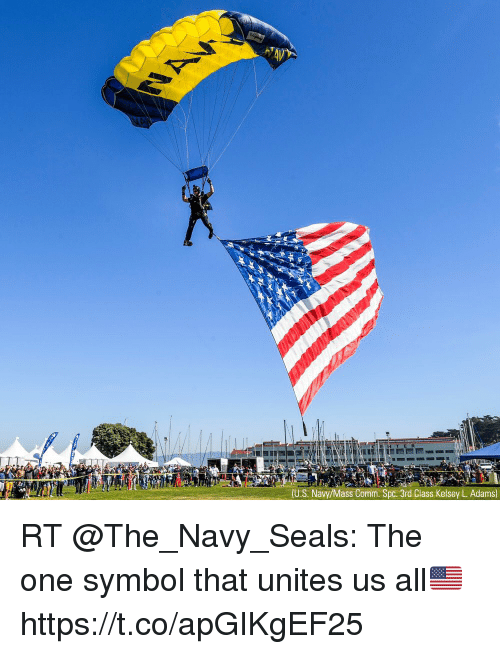 Memes, Navy, and 🤖: T ER  (U.S. Navy/Mass Comm. Spc. 3rd Class Kelsey L. Adams) RT @The_Navy_Seals: The one symbol that unites us all🇺🇸 https://t.co/apGIKgEF25