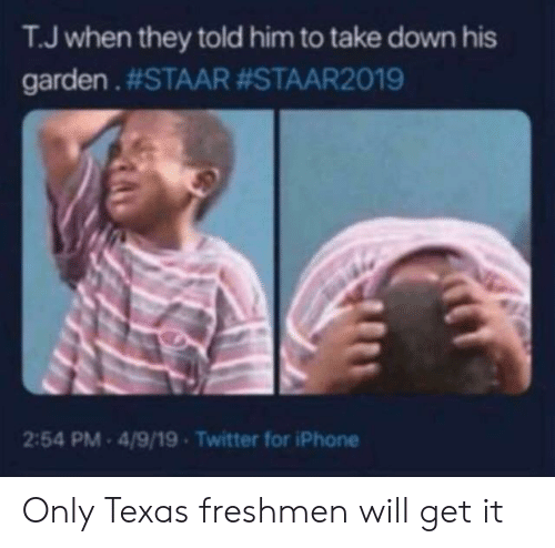 Staar: T.J when they told him to take down his  garden . #STAAR #STAAR2019  2:54 PM 4/9/19 Twitter for iPhone Only Texas freshmen will get it