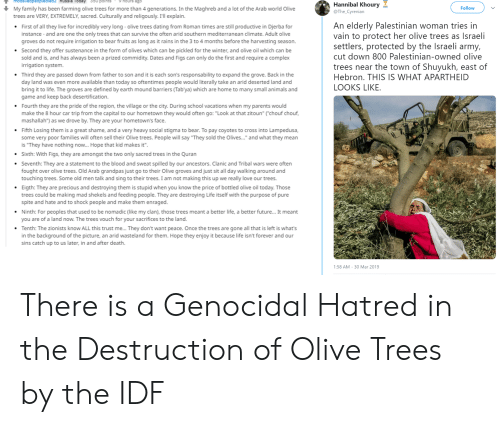 """Animals, Complex, and Dating: T moastlespeopledled2 Russla Tody 350 POinte  Hannibal Khoury  @The_Cyre  Follow  My family has been farming olive trees for more than 4 generations. In the Maghreb and a lot of the Arab world Olive  trees are VERY, EXTREMELY, sacred. Culturally and religously. I'll explain.  An elderly Palestinian woman tries in  vain to protect her olive trees as Israeli  First of all they live for incredibly very long-olive trees dating from Roman times are still productive in Djerba for  instance-and are one the only trees that can survive the often arid southern mediterranean climate. Adult olive  groves do not require irrigation to bear fruits as long as it rains in the 3 to 4 months before the harvesting season  Second they offer sustenance in the form of olives which can be pickled for the winter, and olive oil which can be  sold and is, and has always been a prized commidity. Dates and Figs can only do the first and require a complex  rrigation system  Third they are passed down from father to son and it is each son's responsability to expand the grove. Back in the  day land was even more available than today so oftentimes people would iterally take an arid deserted land and  bring it to life. The groves are defined by earth mound barriers (Tab'ya) which are home to many small animals and  game and keep back desertification  Fourth they are the pride of the region, the village or the city. During school vacations when my parents would  make the 8 hour car trip from the capital to our hometown they would often go: """"Look at that zitoun""""(""""chouf chouf  mashallah"""") as we drove by. They are your hometown's face  Fifth Losing them is a great shame, and a very heavy social stigma to bear. To pay coyotes to cross into Lampedusa  some very poor families will often sell their Olive trees. People will say """"They sold the Olives... and what they mean  is """"They have nothing now... Hope that kid makes it  Sixth: With Figs, they are amongst the two only sacred """