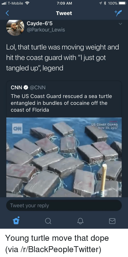 """Anaconda, Blackpeopletwitter, and cnn.com: T-Mobile  7:09 AM  * 100%  Tweet  Cayde-6'5  @Parkour_Lewis  Lol, that turtle was moving weight and  hit the coast guard with """"I just got  tangled up"""", legend  CNN@CNN  The US Coast Guard rescued a sea turtle  entangled in bundles of cocaine off the  coast of Florida  US COAST GUARD  Nov 19, 2017  CAN  Tweet your reply <p>Young turtle move that dope (via /r/BlackPeopleTwitter)</p>"""