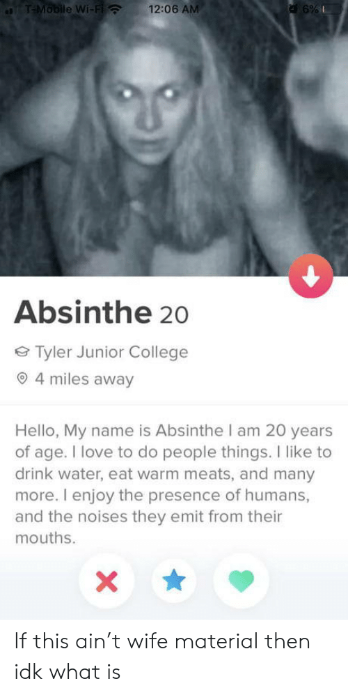 College, Hello, and Love: T-Mobile Wi-Fi  12:06 AM  a 6%  Absinthe 20  Tyler Junior College  4 miles away  Hello, My name is Absinthe I am 20 years  of age. I love to do people things. I like to  drink water, eat warm meats, and many  more. I enjoy the presence of humans,  and the noises they emit from their  mouths. If this ain't wife material then idk what is