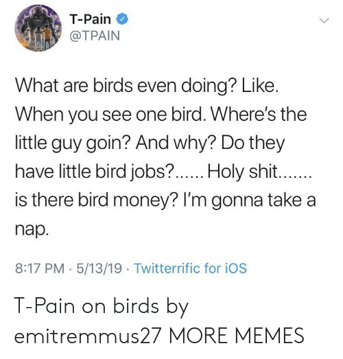 Dank, Memes, and Money: T-Pain  @TPAIN  What are birds even doing? Like.  When you see one bird. Where's the  little guy goin? And why? Do they  have little bird jobs?  .Holy shit  is there bird money? lI'm gonna take a  nap.  8:17 PM 5/13/19 Twitterrific for iOS T-Pain on birds by emitremmus27 MORE MEMES
